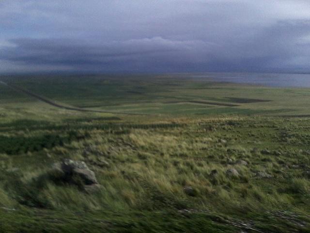 oniric landscape