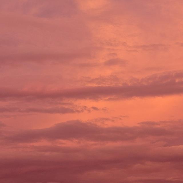 shapes of dusk