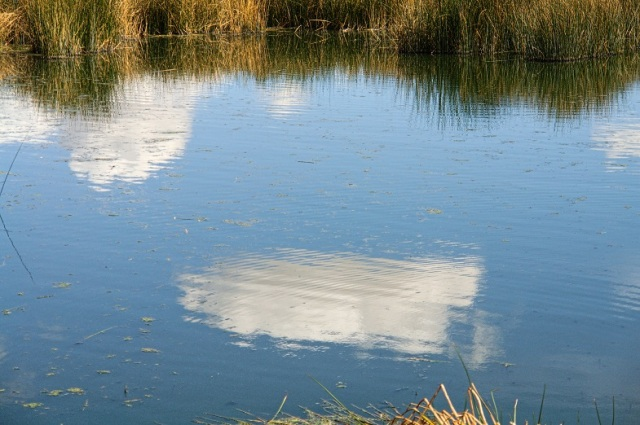 a cloud caught in its reflection