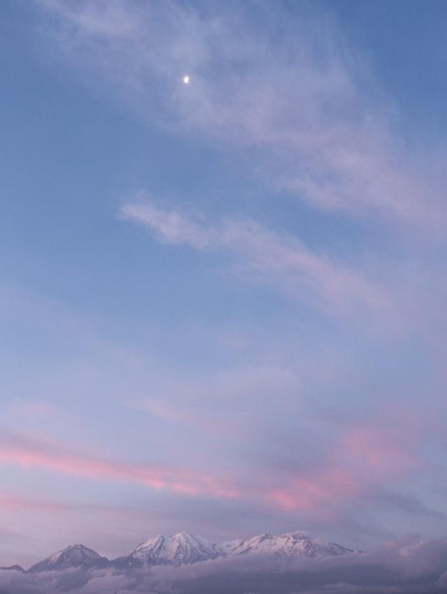 Moon walking a feathery road